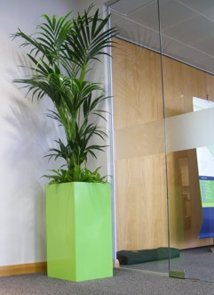 light green planter to match corporate colour